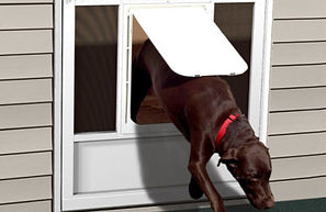 pet_door_with_dog2.jpg