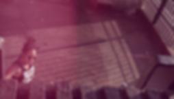vlcsnap-2017-08-18-09h35m34s004.png