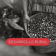 DesaRural (2).png