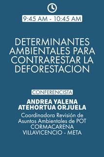 DIA 01 DETERMINANTES AMBIENTALES.png