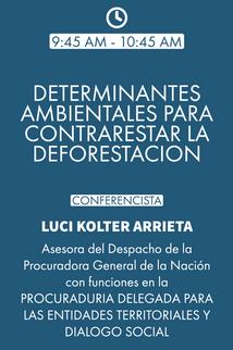 DIA 01 DETERMINANTES AMBIENTALES (1).png