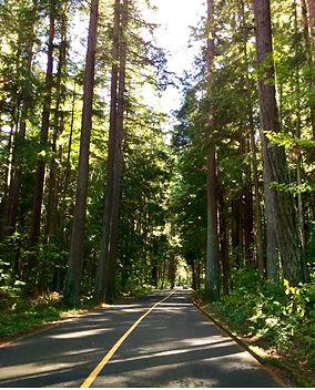 Lake Padden, Bellingham, WA