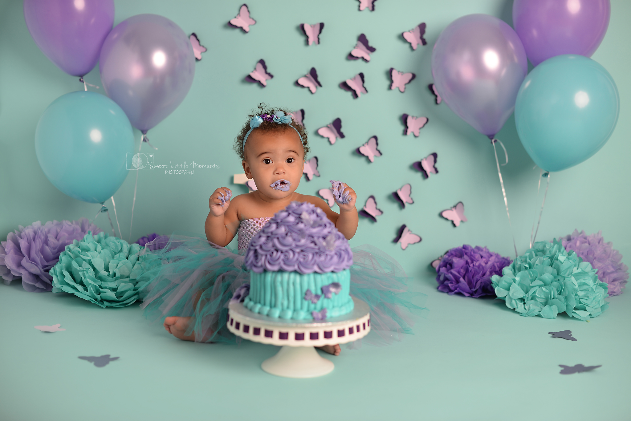 butterfly teal purple cake smash