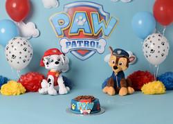 Paw patrol cake smash