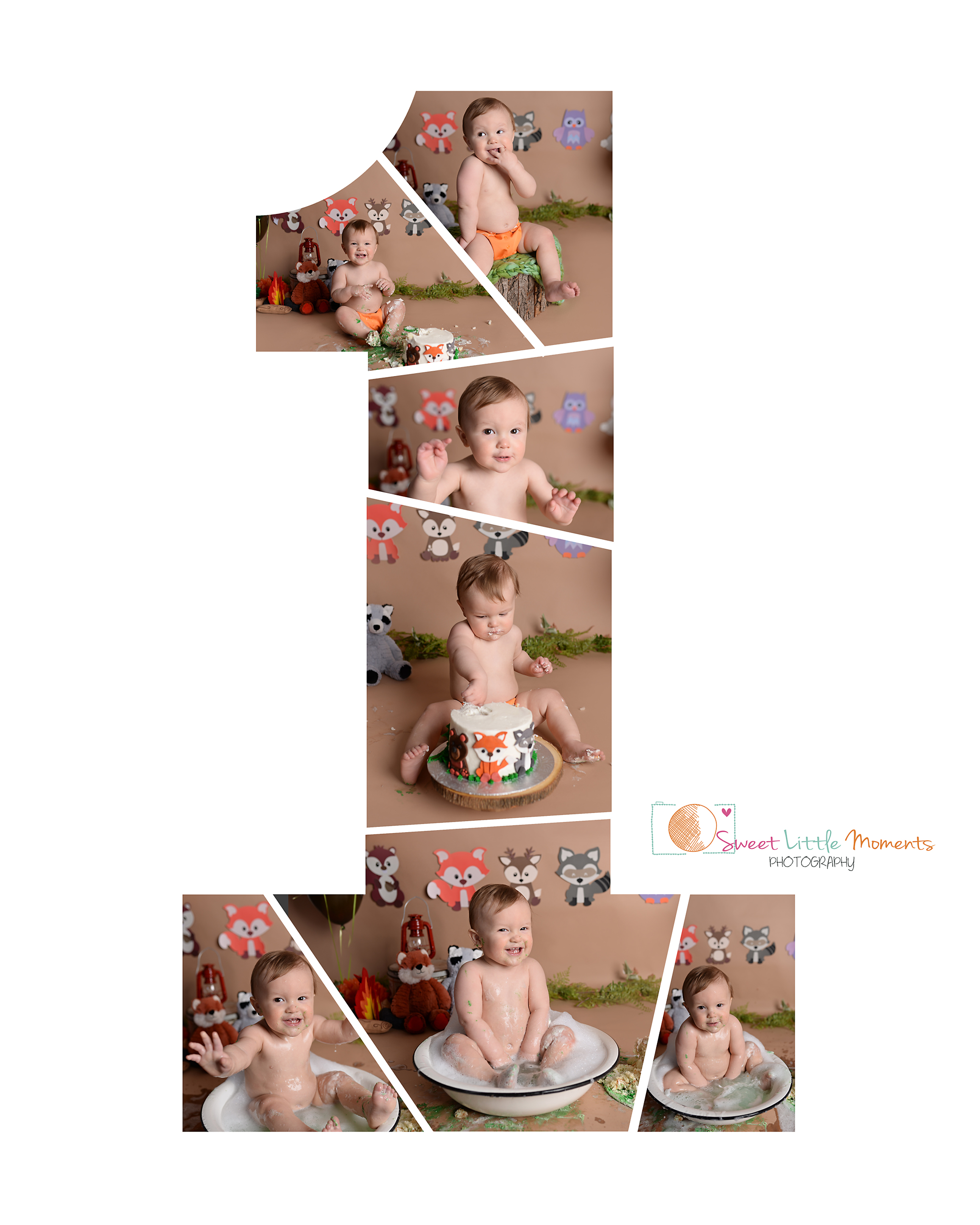 forest friends cake smash