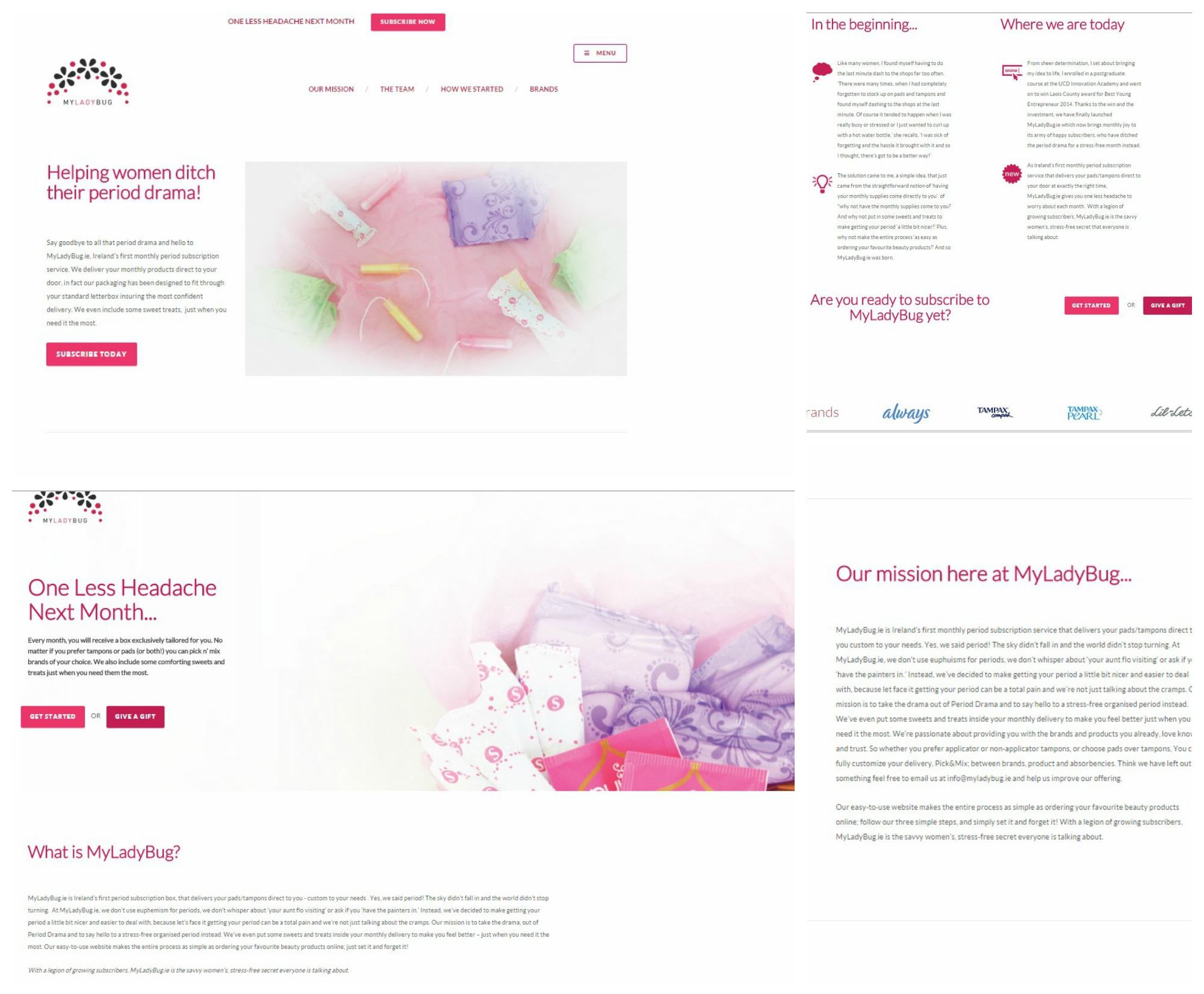 Myladybug.ie web copy
