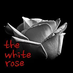 White Rose Logo 2.png
