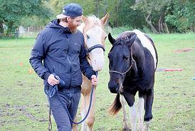 Alex beide Pferde ganz nah.jpeg