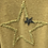 Thumbnail: Star Top