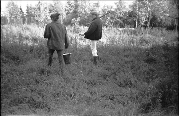 tree planting_igor_lutz_vadim_zakharov_m