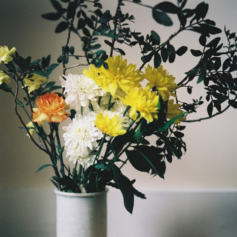 Still Life with Chrysanthemums / 03.18