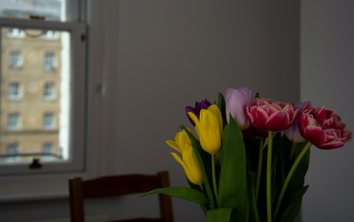 Fresh flowers in the living room | Week 1 | March 2020, London.