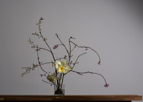 "Flower composition with ""flower frog"" / KIDGE Flowers / 03.19"