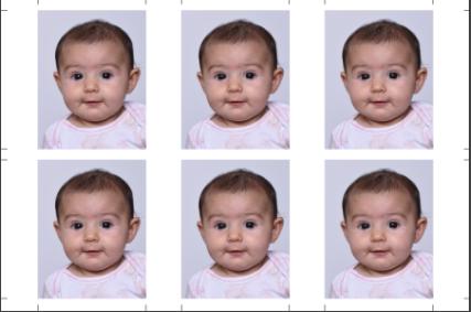 Photo identité bébé