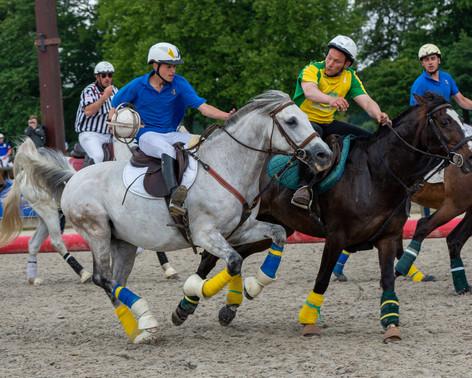 Horse ball - Haras de Jardy