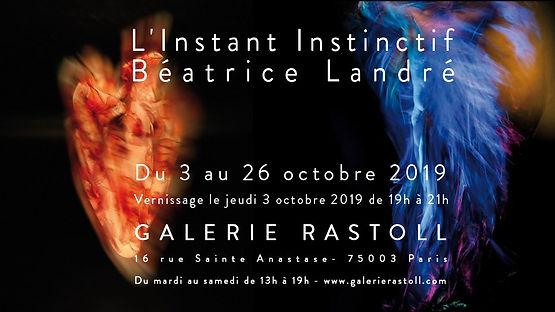 Exposition Instant Instinctif