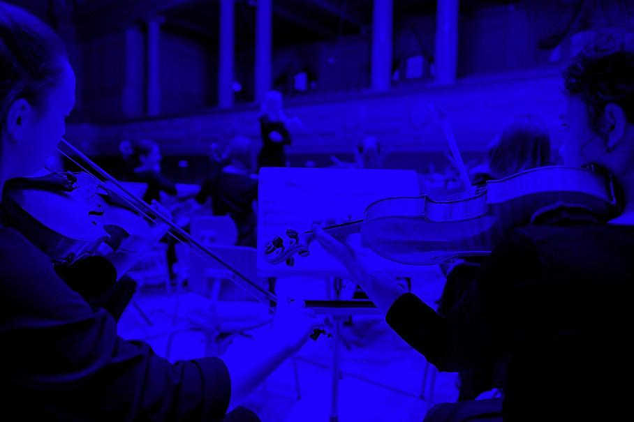 Violas in concert_edited.jpg
