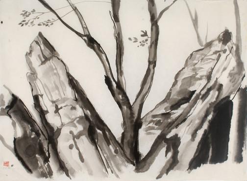cs_CHINESE_INK_2.jpg
