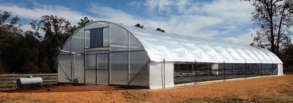 greenhouse poly web.JPG