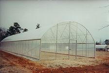 Greenhouse01.jpg