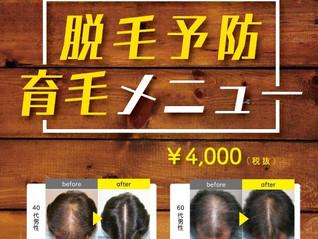 【成功率82%以上!】5人中4人の薄毛の改善が出来る育毛メニュー
