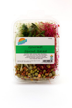 Gourmet Sprout Salad