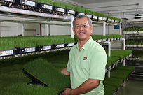 owner with wheatgrass