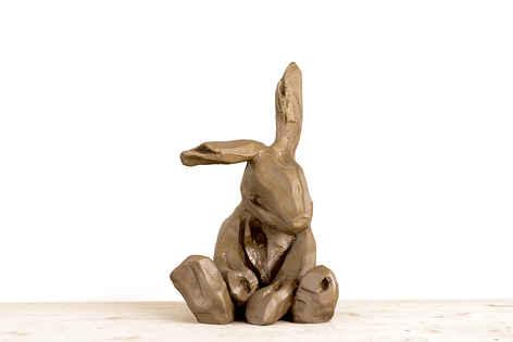 [s094] Brown Rabbit