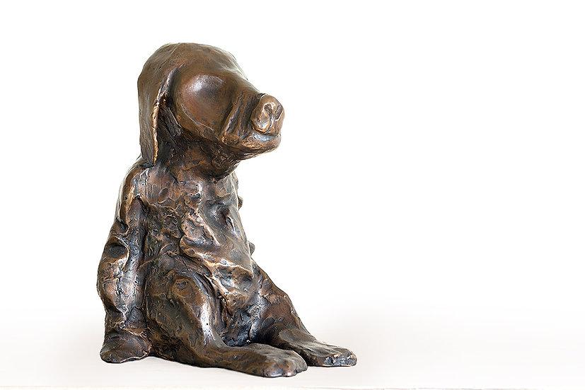 כלבלב, 2015 (s087)
