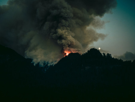 How Do Wildfires Spread So Quickly?