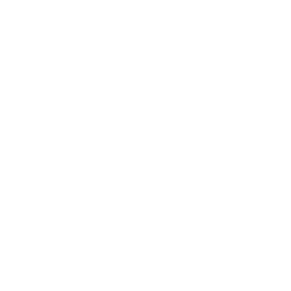 FCS LOGO Gestión PNG-01.png