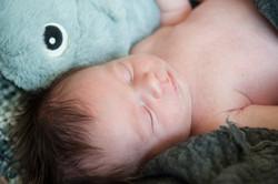 RV-Newborn-039