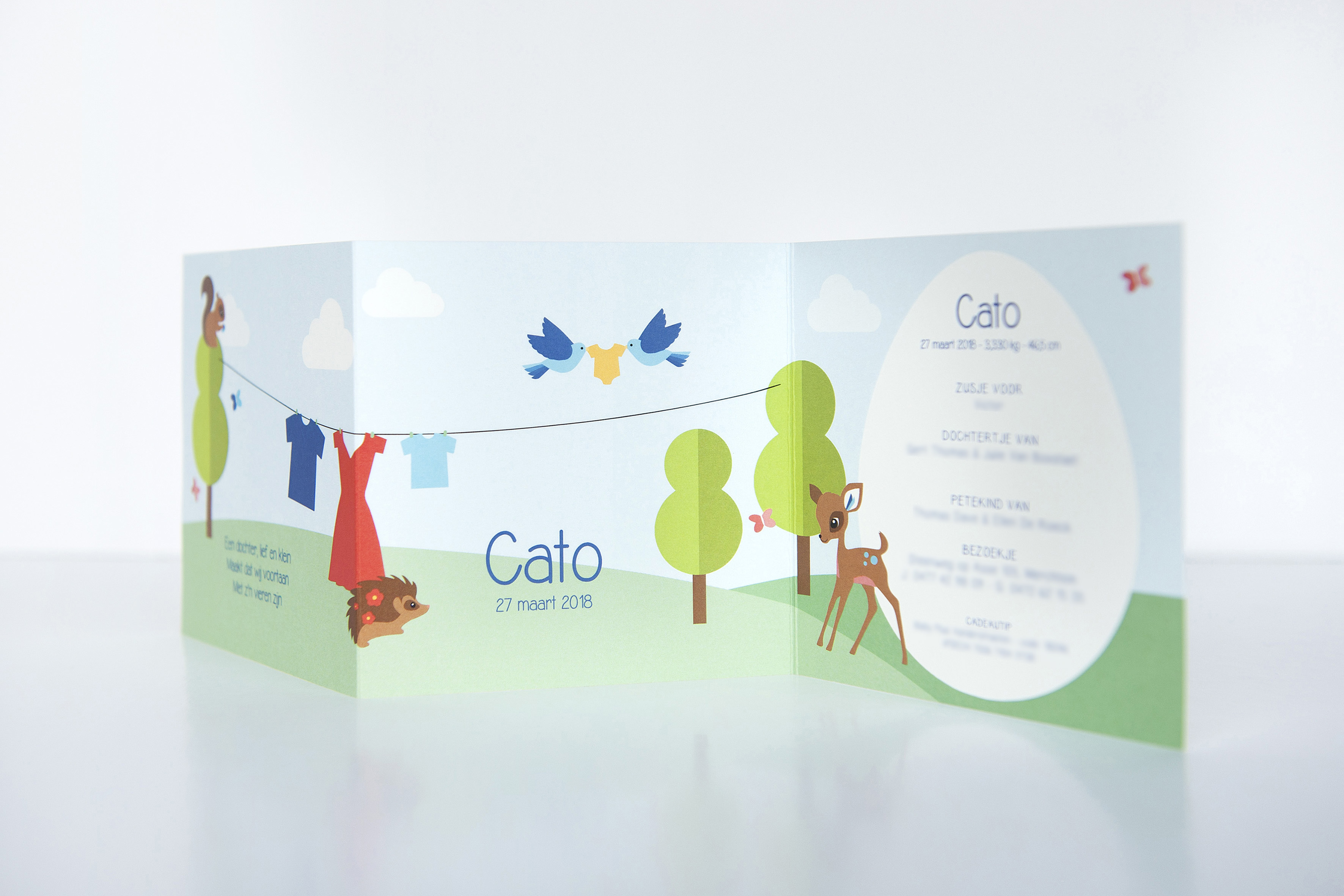 Cato006