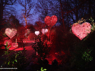 Heart Walk - Christmas at Dunham Massay