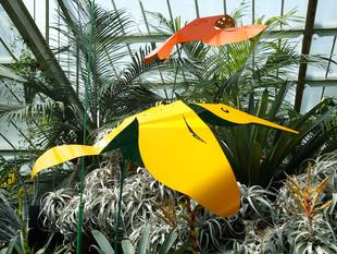 Flight of Fancy - Prince of Wales Conservatory, RBG Kew