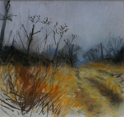 Study for Morning, Lanton Craigs Lane 2004