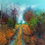 Lanton Craigs Lane, Looking West, 2003