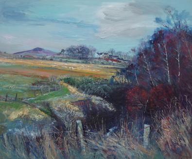 Hawthornside Grange, from Hawthornside Burn