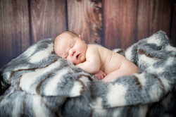 Newborn Photographer Traverse City