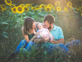 Family Photos in the Sunflower Fields | Traverse City