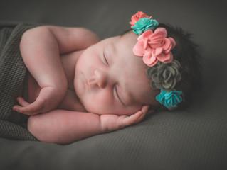 Traverse City Newborn Photographer | Meet Baby Suzie!