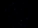 suessbach_logo.png
