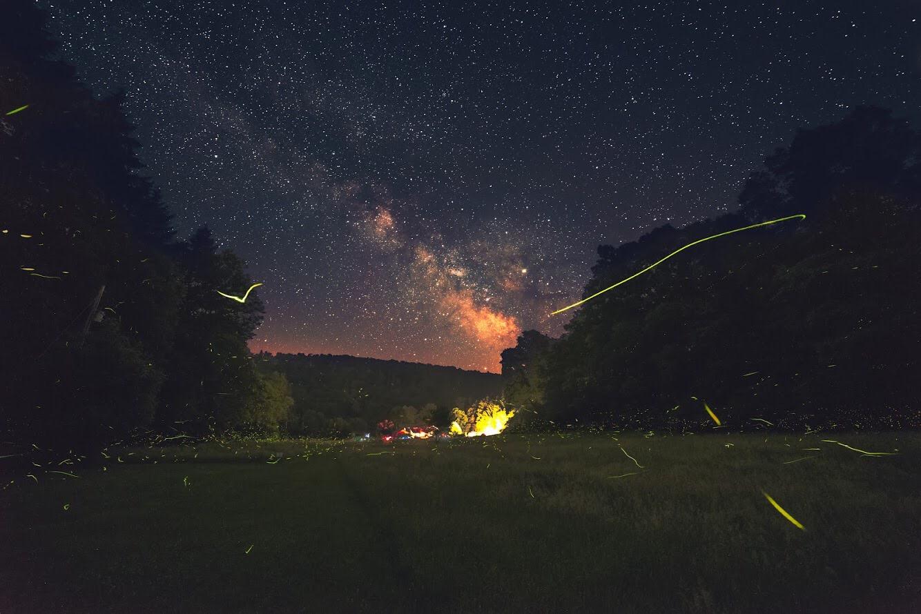 Fireflies and Milky Waty