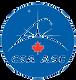 208-2089973_csa-logo-canadian-space-agen