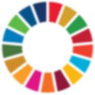 SDG Wheel_WEB - Copy.png