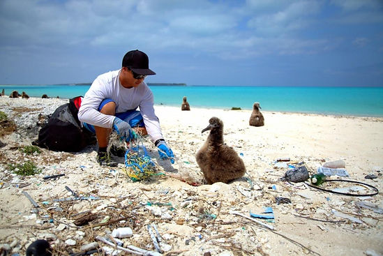NOAA marine litter.jpg