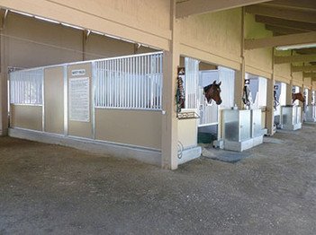 fairbanks ranch equestrian center indoor stalls with horses poppin theirheads out and halters hanging up, ranch santa fe, california, ca