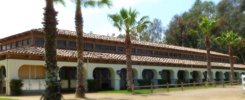 back of fairbanks ranch equestrian center in rancho santa fe with palm trees and green grass for grazing