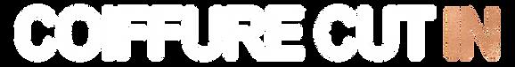 logo copper 2019.png