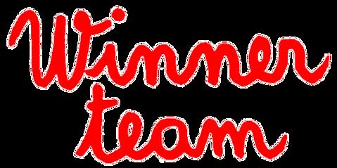 Winner-Team-logo2.png